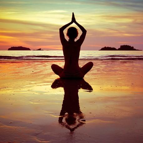 The Harmony of Yoga